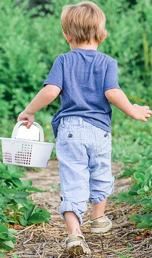 slide-child-walking-basket